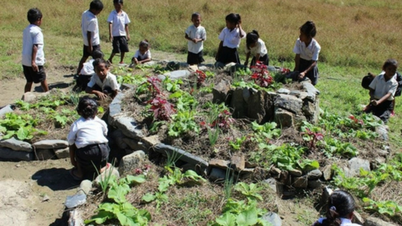 Timor Leste: Living Sciences And Life Long Skills In Schools