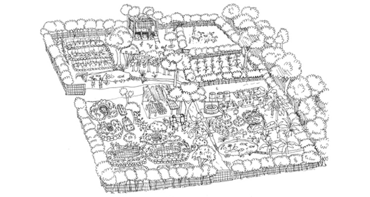 Permaculture 3 of 3