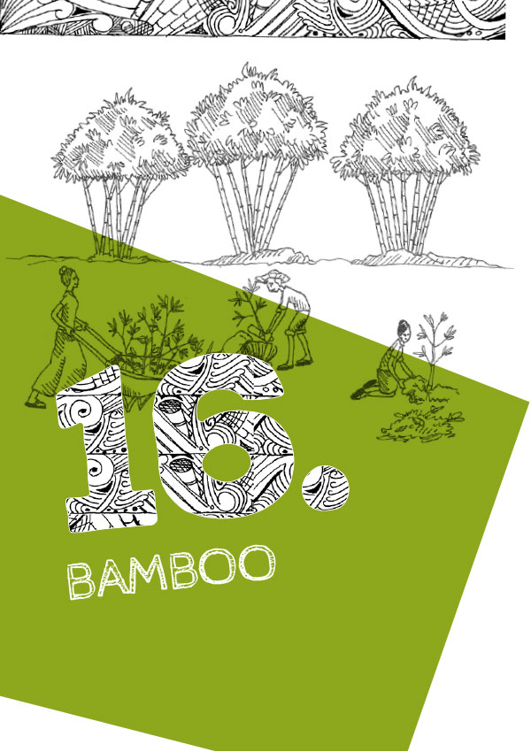 Ch16. Bamboo