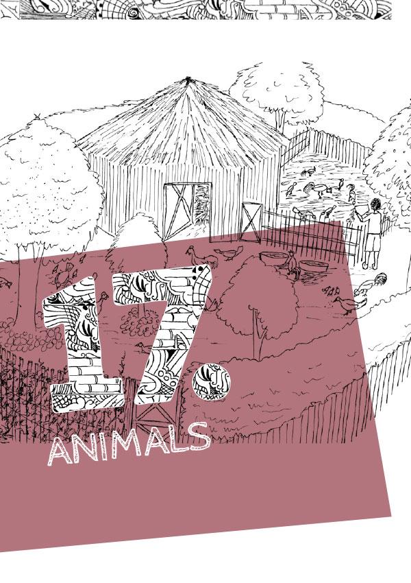 Ch17. Animals