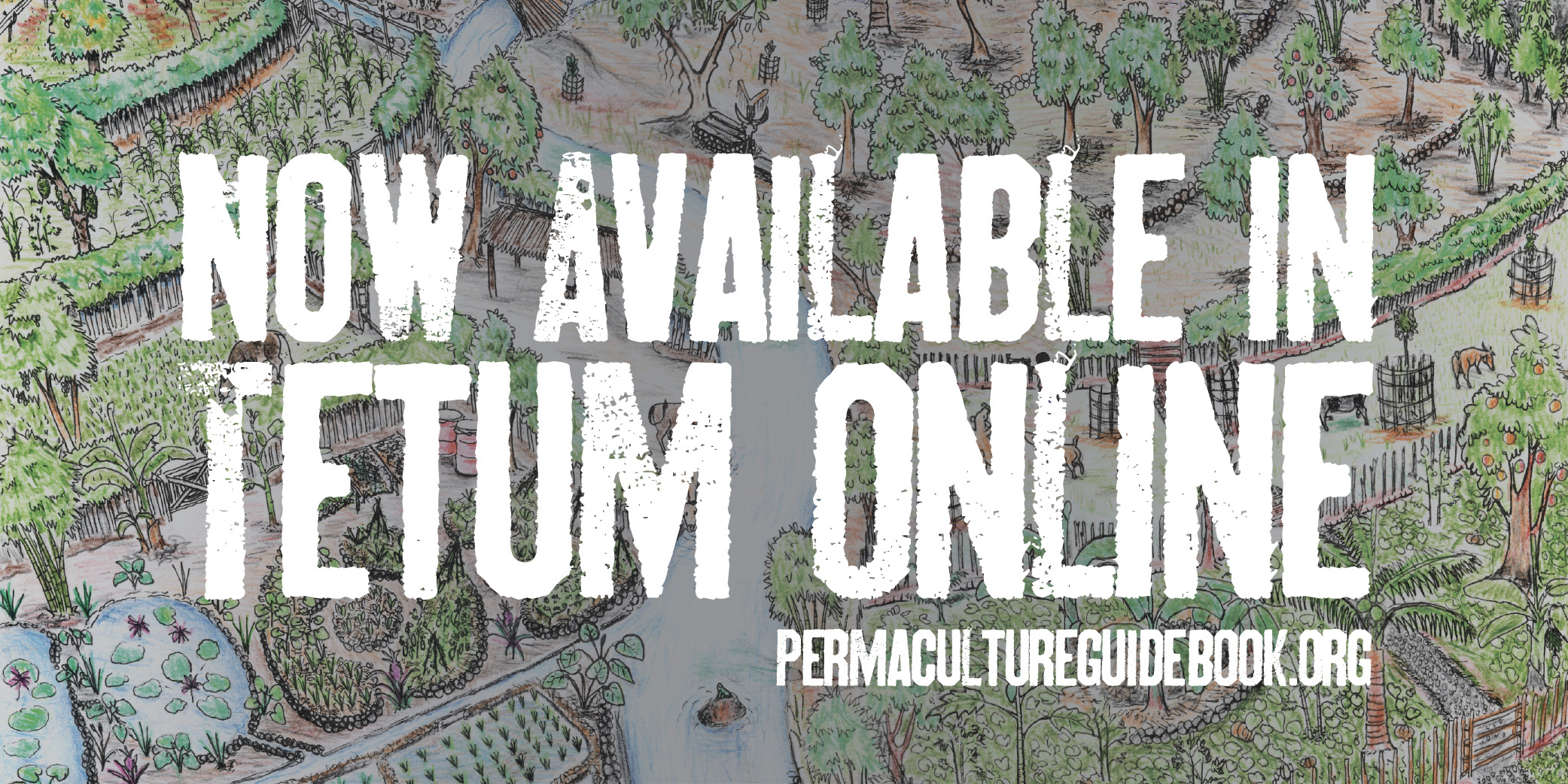 Tetum edition now available online!